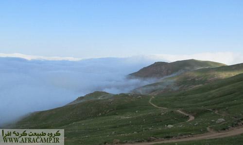 جاده در مه فرو میرود