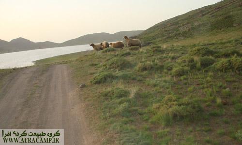 اطراف دریاچه جاده ای خاکی وجود دارد که فقط با ماشین های شاسی بلند می شود از آن گذشت