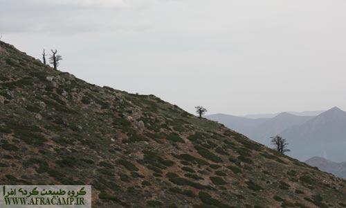شیب نزدیک های قله