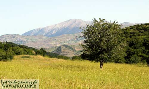 دور نمای کوهستان درفک از داماش