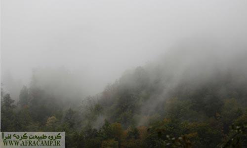 حرکت ابرها و جنگل پاییزی و یک روز رویایی