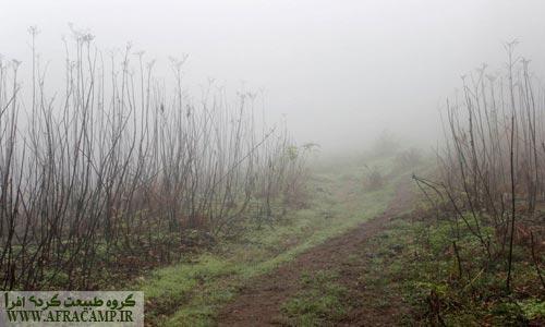 مراتع را سراسر مه گرفته است!