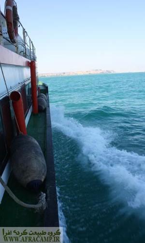 قایق سواری در میان امواج خلیج فارس