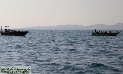 مسافران مشتاق دیدن دسته های دلفن