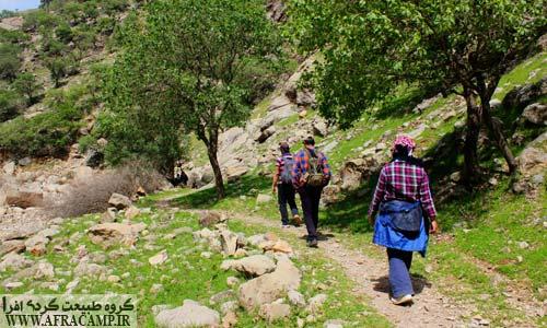 در مسیر آبشار