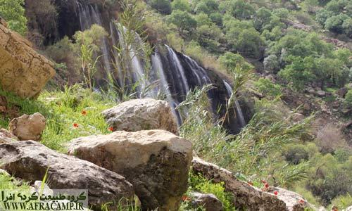 ترکیب زیبای آبشار و گل های بهاری