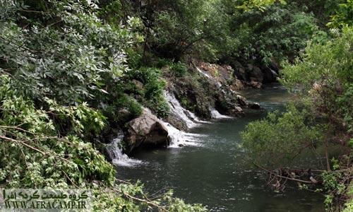 درختان و رودخانه و ...