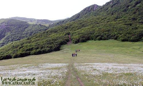 از دریاچه سوها ابتدا از این جنگل و مسیر عبور خواهید کرد.