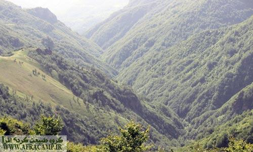 دره های مملو از درخت