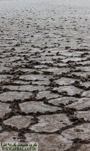 شروع برآمدگی ها بر روی زمین و ایجاد چندضلعی