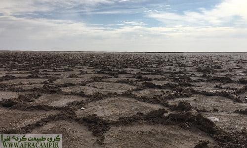 زمین نمناک است و هنوز سفیدی نمک بر سطح پدیدار نشده است.