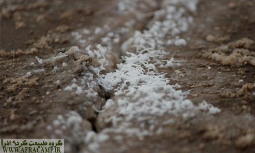 با ایجاد ترک روی زمین آب نمک راحت تر به بیرون می تراود و اینچنین بلورهای زیبای نمک ایجاد می گردد.