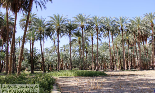 رود کم آب دامن رونق بسیاری به کشاوری این منطقه داده است.