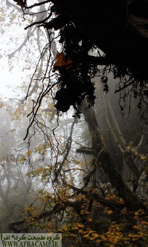 در مه و هنگام بارندگی، با توجه به شیب زیاد و لغزندگی صعود و فرود از قلعه ماران کار دشواریست، به قول دوستی به خطرش نمی ارزد.