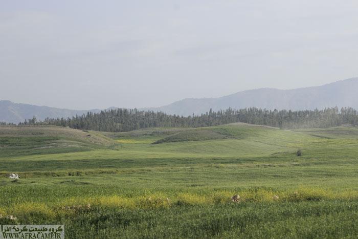کشتزارهای دیم سبزی خاصی به منطقه داده است.