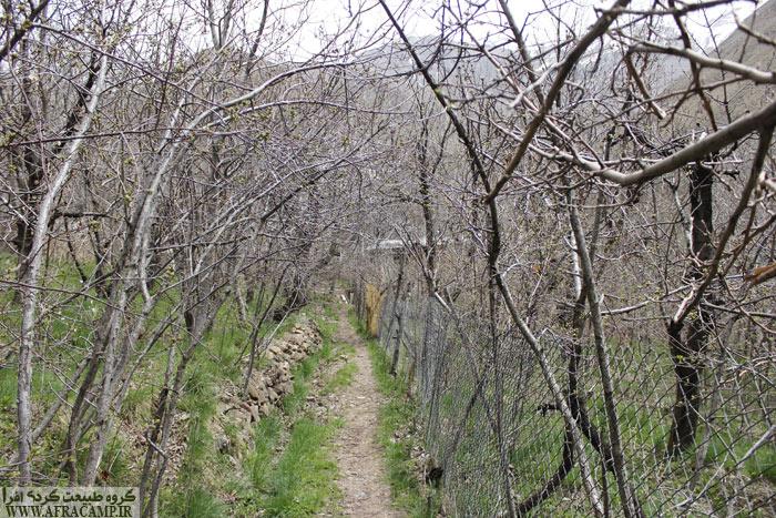 مسیر کوچه باغ به سمت آبشار